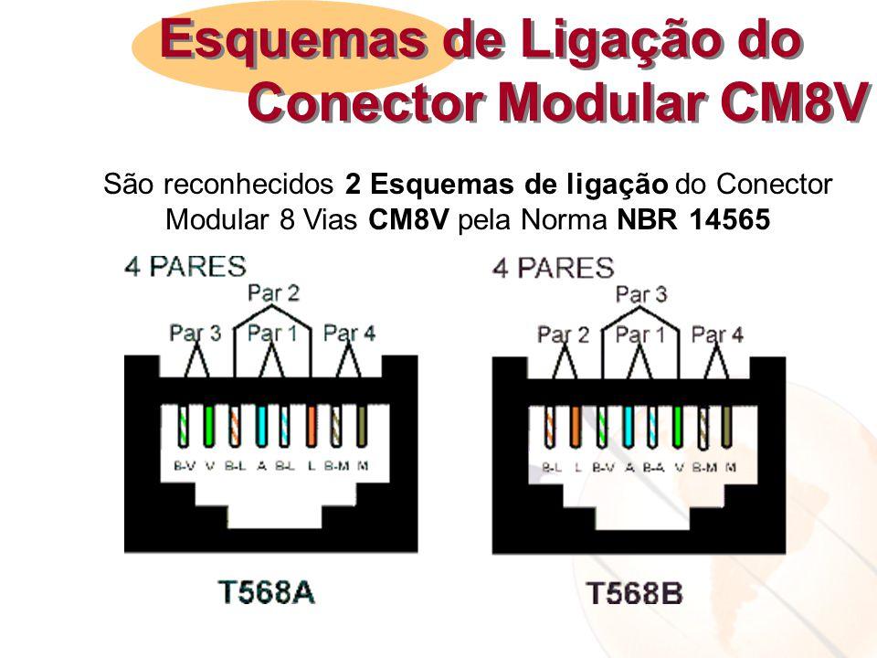 Esquemas de Ligação do Conector Modular CM8V