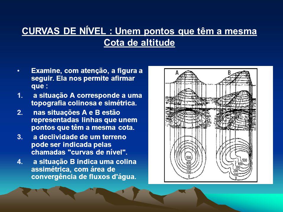 CURVAS DE NÍVEL : Unem pontos que têm a mesma Cota de altitude