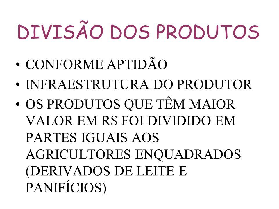 DIVISÃO DOS PRODUTOS CONFORME APTIDÃO INFRAESTRUTURA DO PRODUTOR
