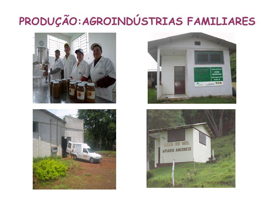 PRODUÇÃO:AGROINDÚSTRIAS FAMILIARES