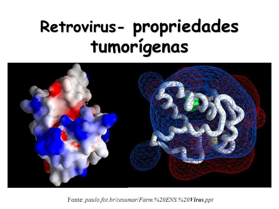 Retrovirus- propriedades tumorígenas
