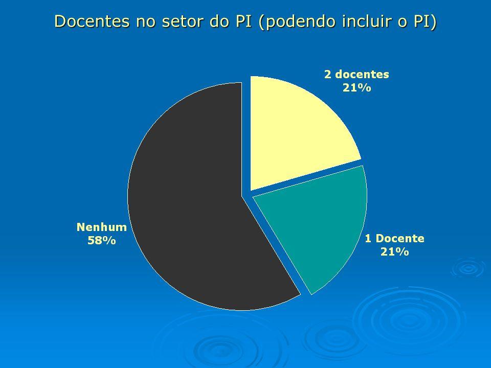 Docentes no setor do PI (podendo incluir o PI)