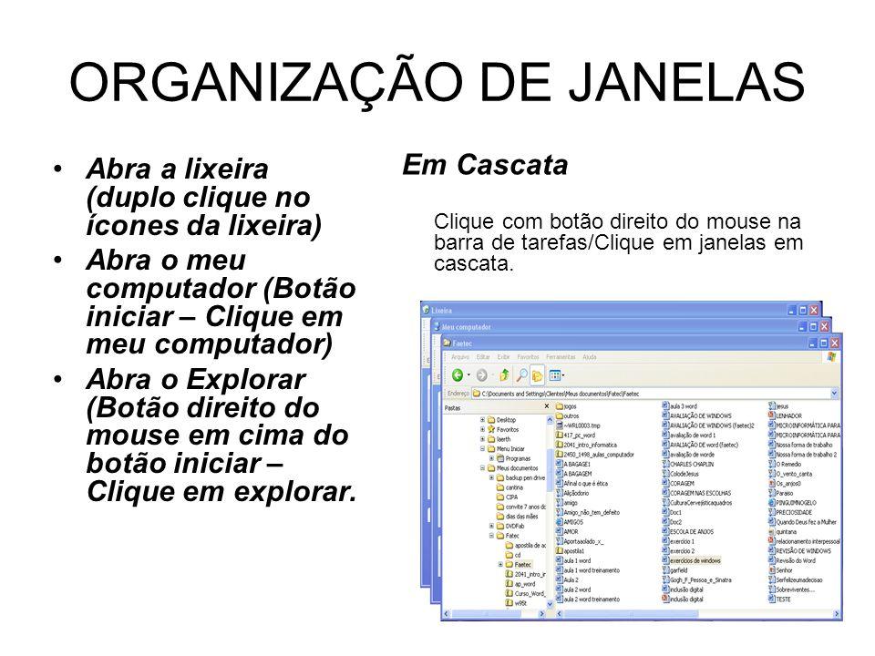 ORGANIZAÇÃO DE JANELAS
