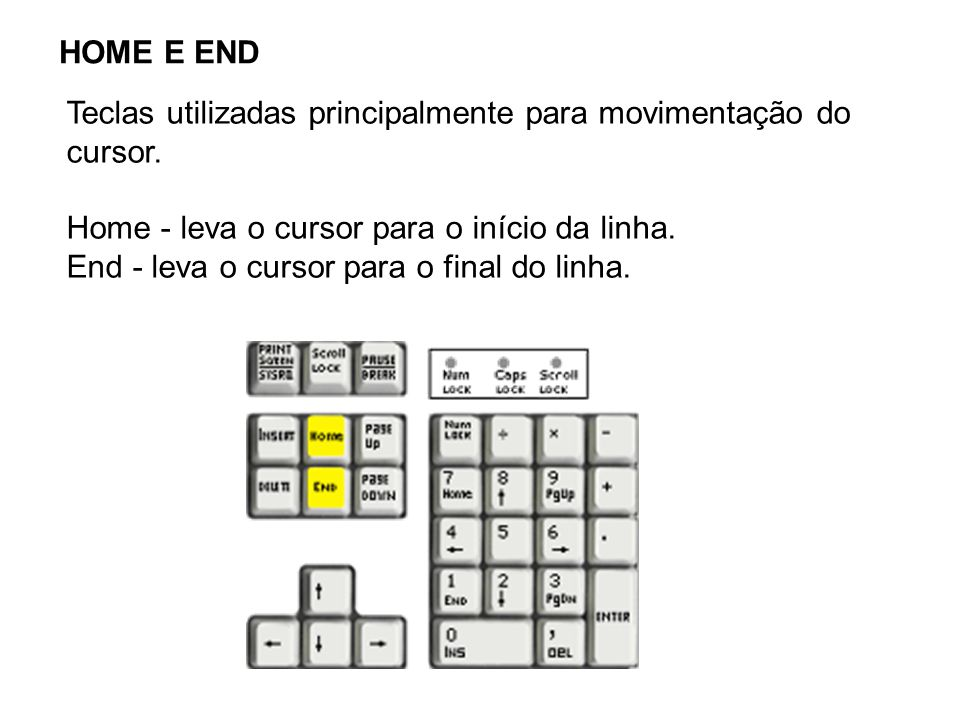 HOME E END Teclas utilizadas principalmente para movimentação do cursor. Home - leva o cursor para o início da linha.