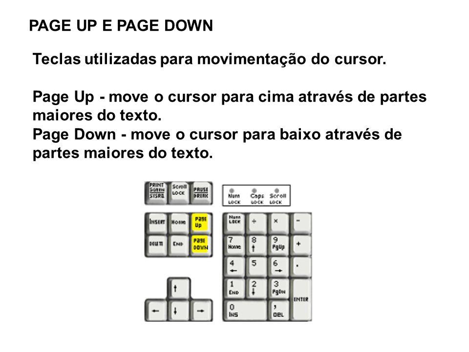 Teclas utilizadas para movimentação do cursor.