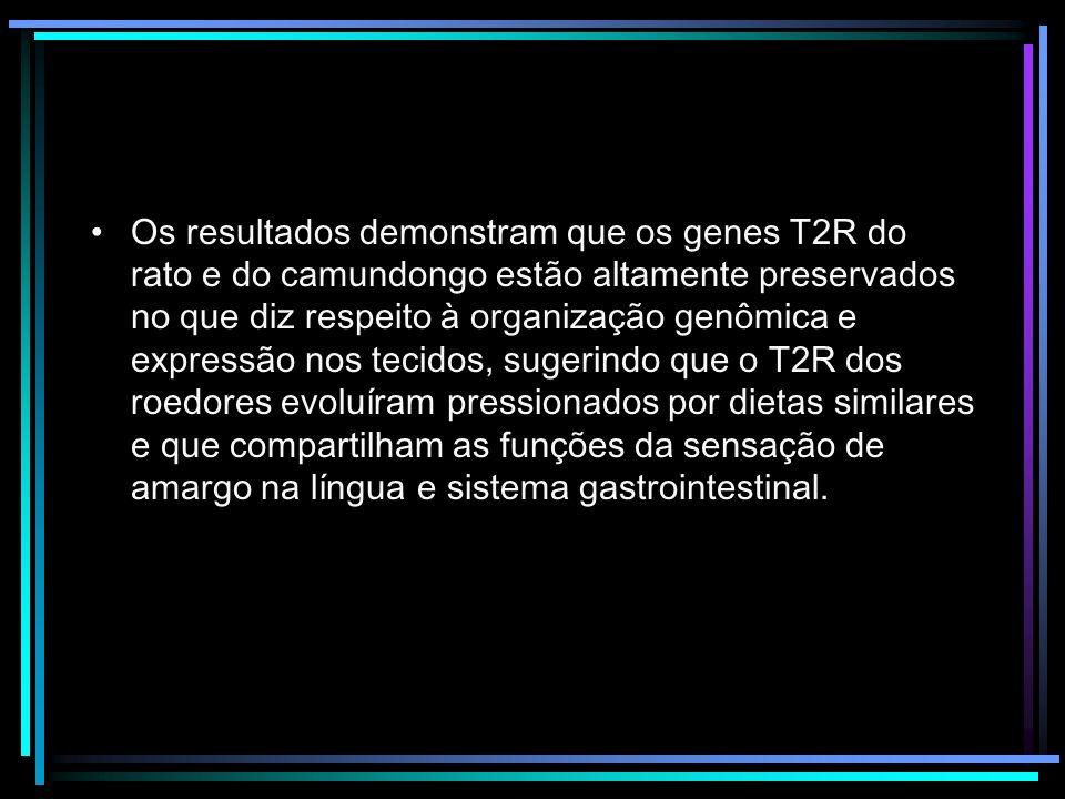 Os resultados demonstram que os genes T2R do rato e do camundongo estão altamente preservados no que diz respeito à organização genômica e expressão nos tecidos, sugerindo que o T2R dos roedores evoluíram pressionados por dietas similares e que compartilham as funções da sensação de amargo na língua e sistema gastrointestinal.