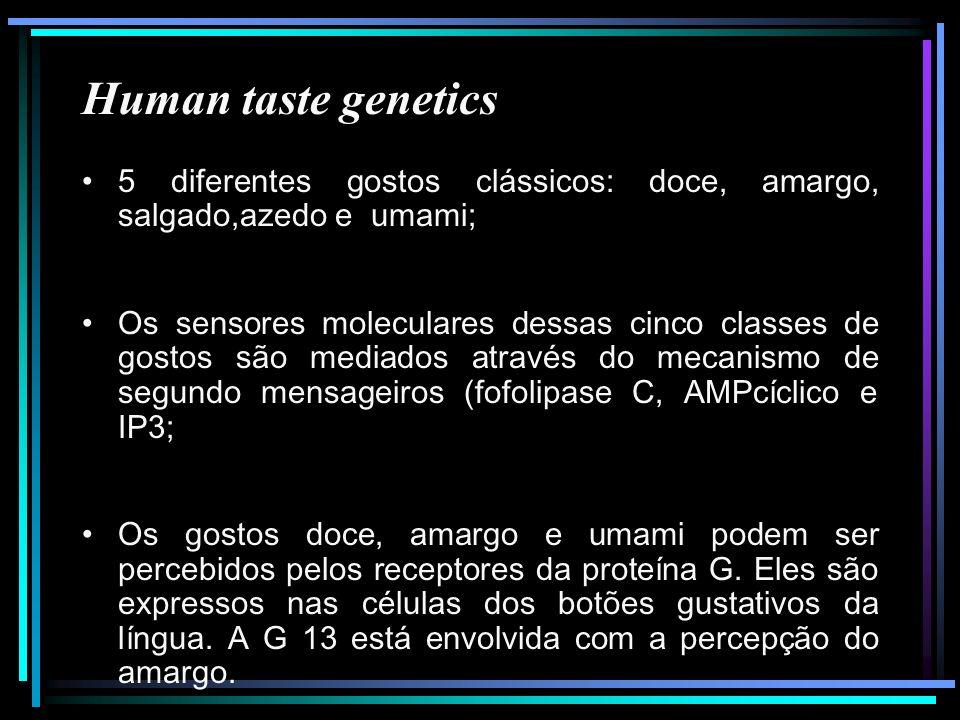 Human taste genetics 5 diferentes gostos clássicos: doce, amargo, salgado,azedo e umami;