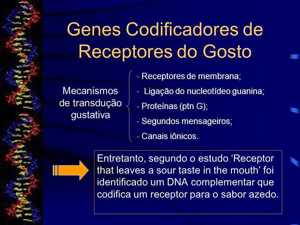 Genes Codificadores de Receptores do Gosto