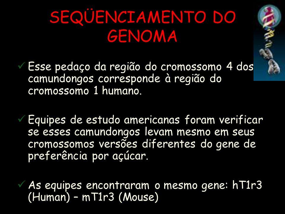 SEQÜENCIAMENTO DO GENOMA