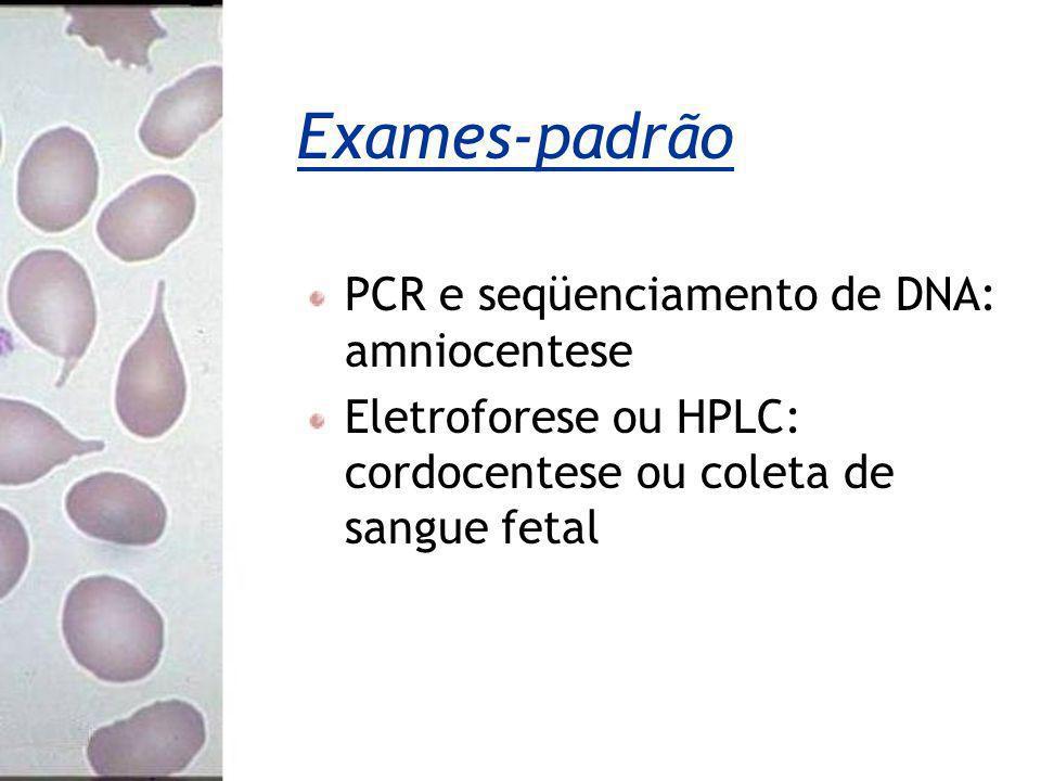 Exames-padrão PCR e seqüenciamento de DNA: amniocentese