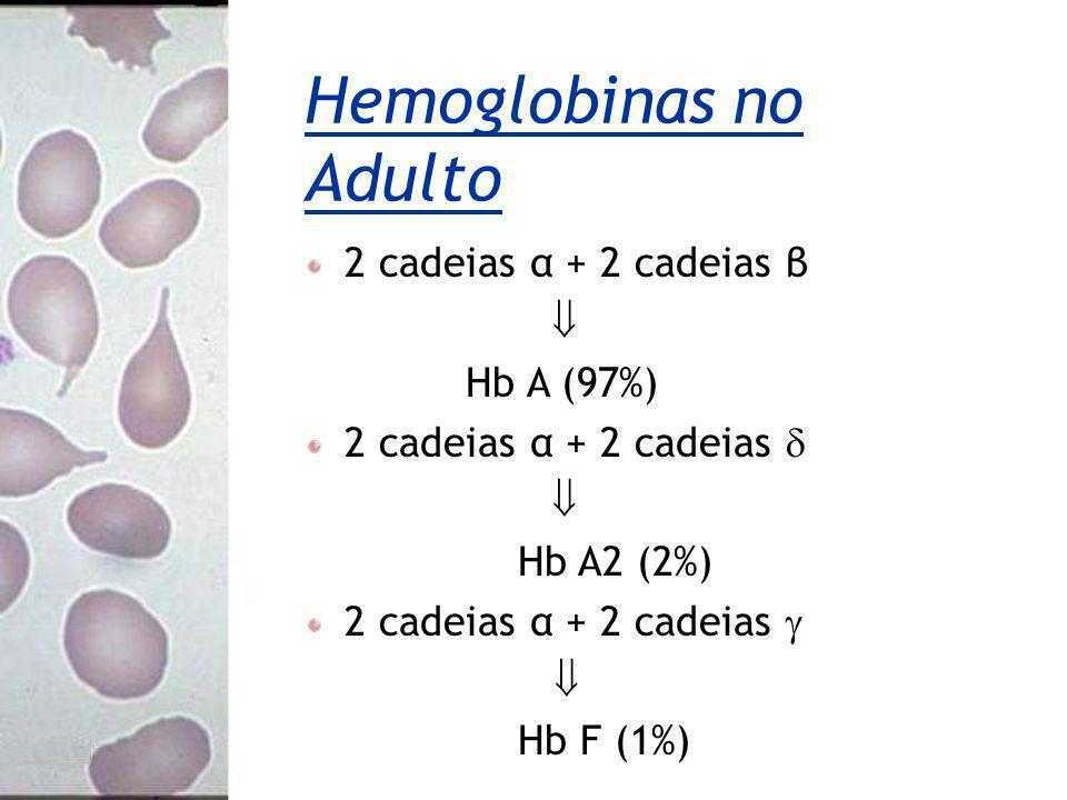 Hemoglobinas no Adulto