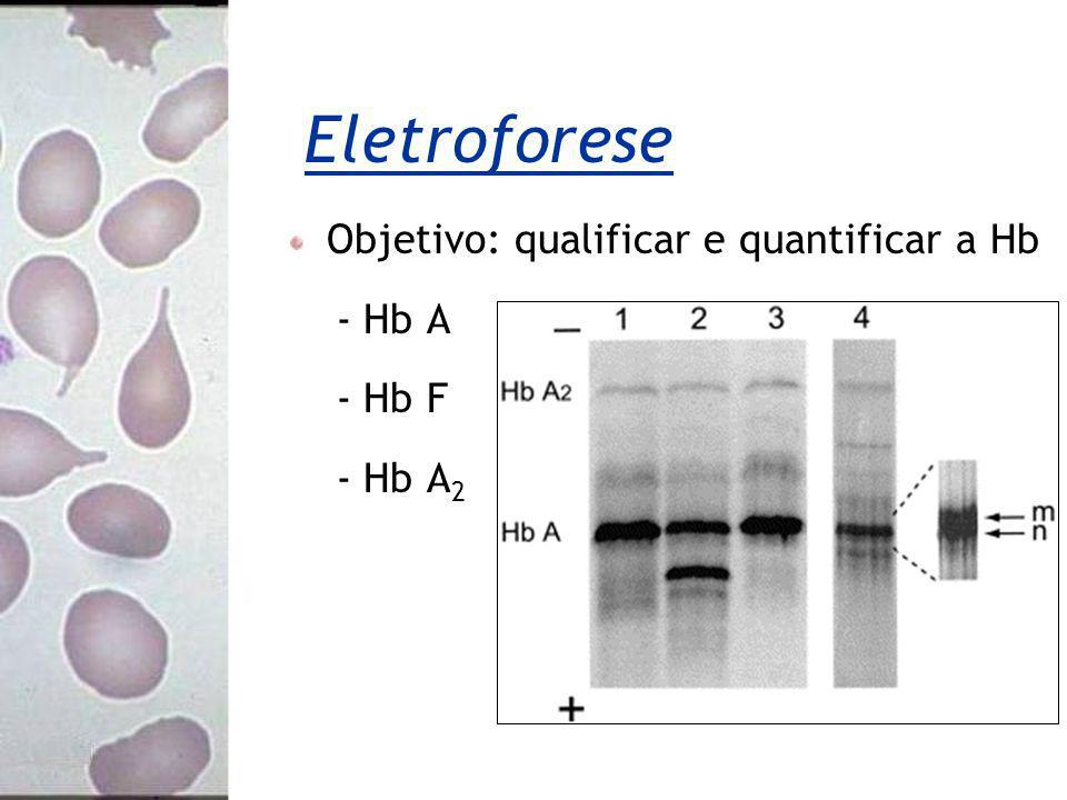 Eletroforese Objetivo: qualificar e quantificar a Hb - Hb A - Hb F