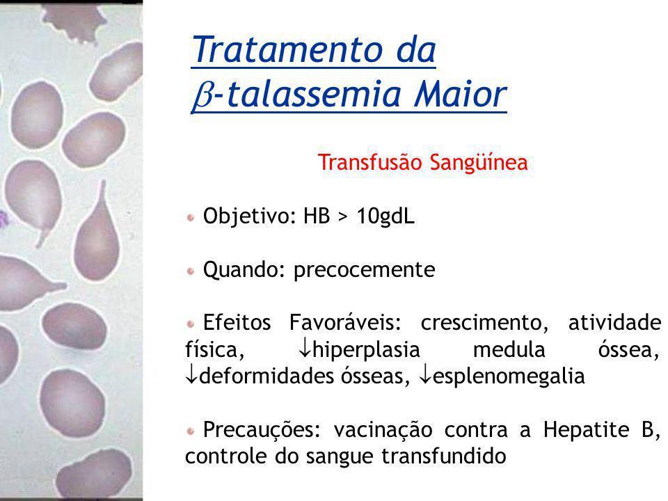 Tratamento da -talassemia Maior Transfusão Sangüínea