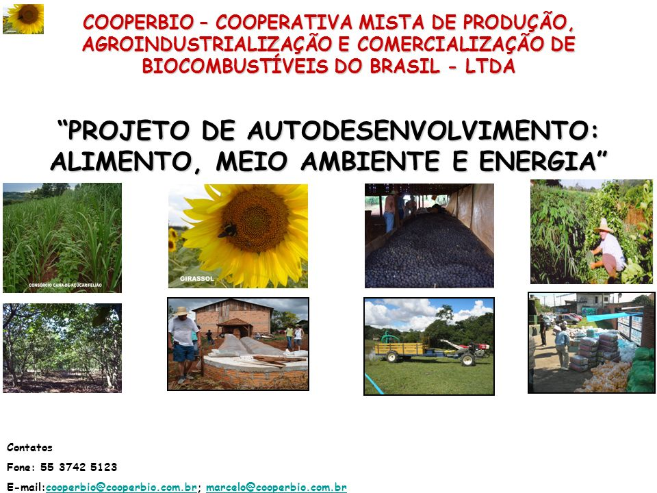 PROJETO DE AUTODESENVOLVIMENTO: ALIMENTO, MEIO AMBIENTE E ENERGIA