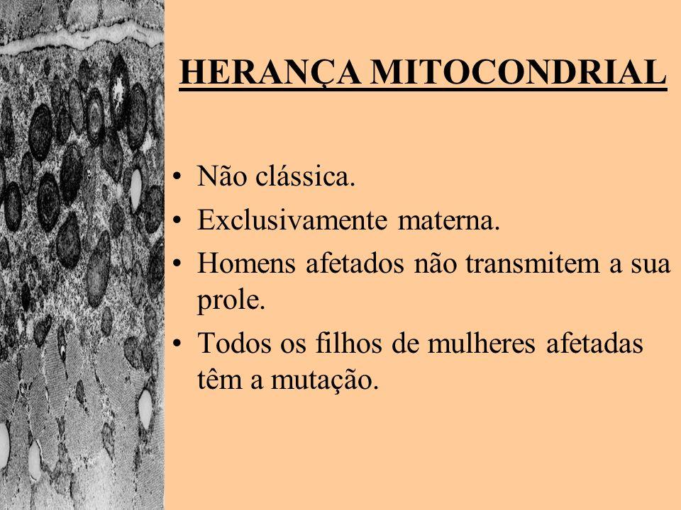 HERANÇA MITOCONDRIAL Não clássica. Exclusivamente materna.