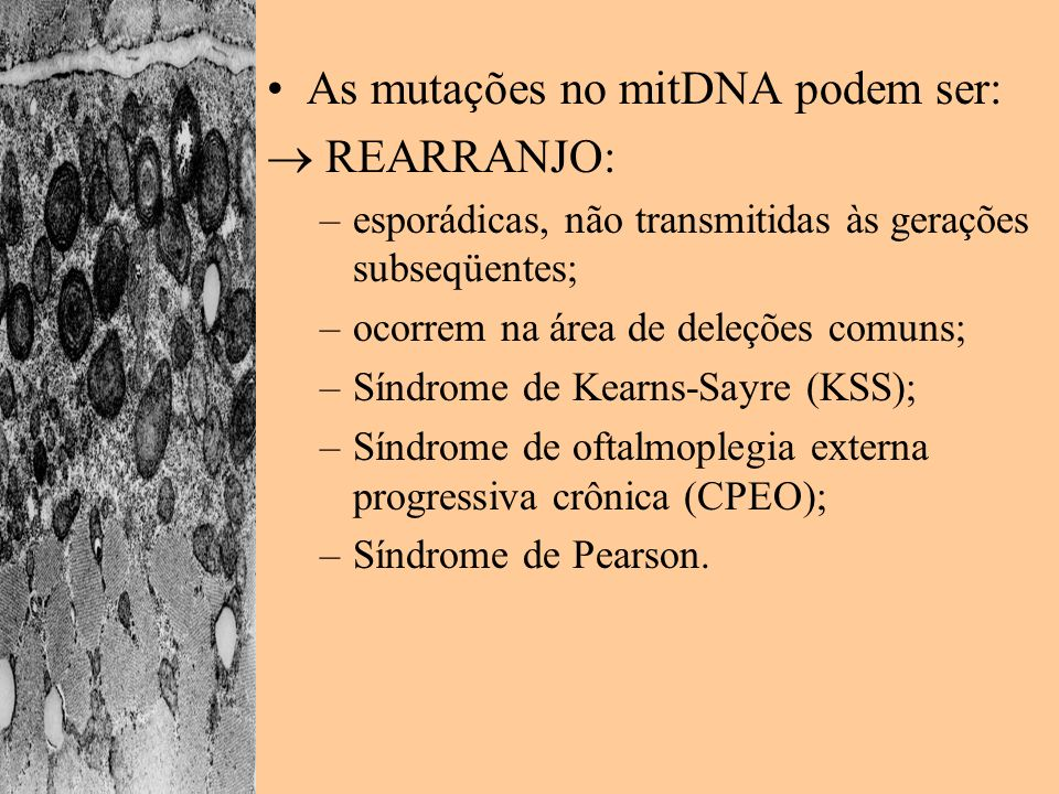 As mutações no mitDNA podem ser:  REARRANJO: