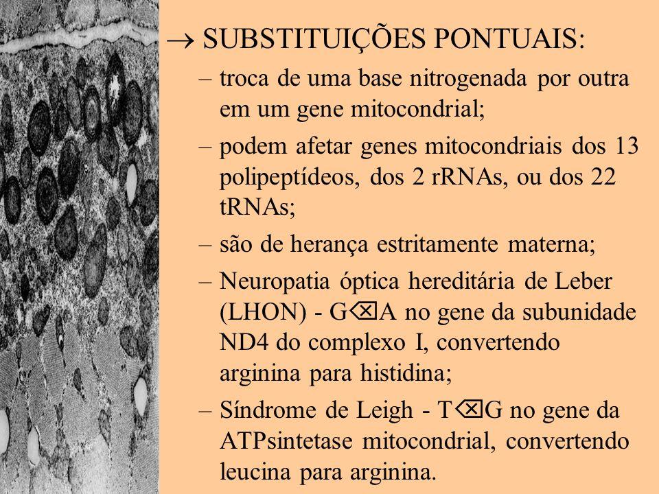 SUBSTITUIÇÕES PONTUAIS: