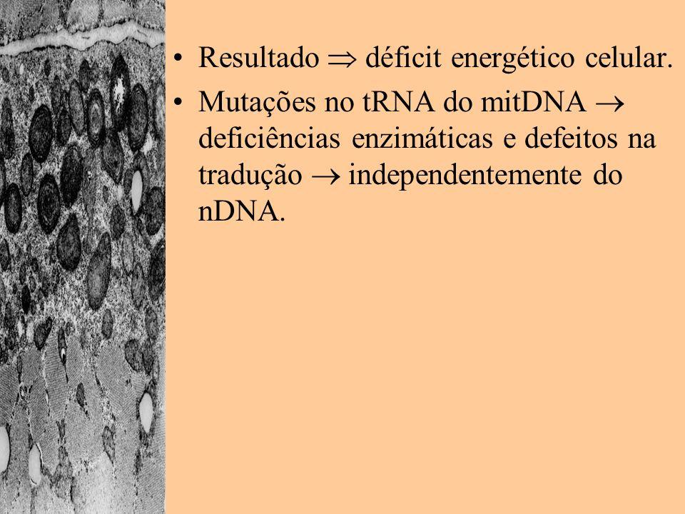 Resultado  déficit energético celular.
