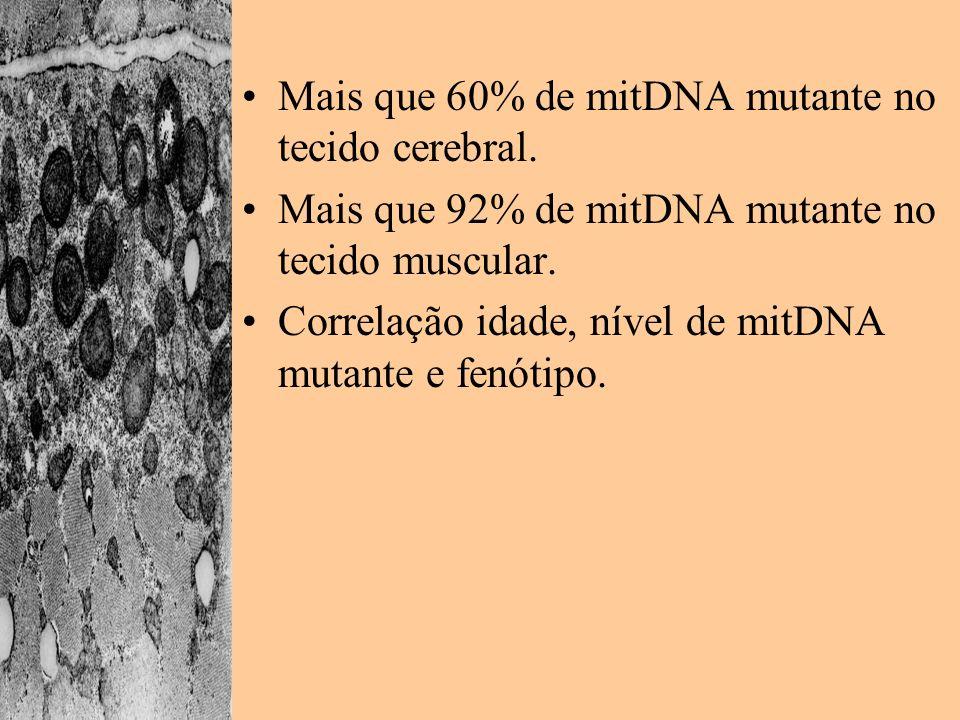 Mais que 60% de mitDNA mutante no tecido cerebral.