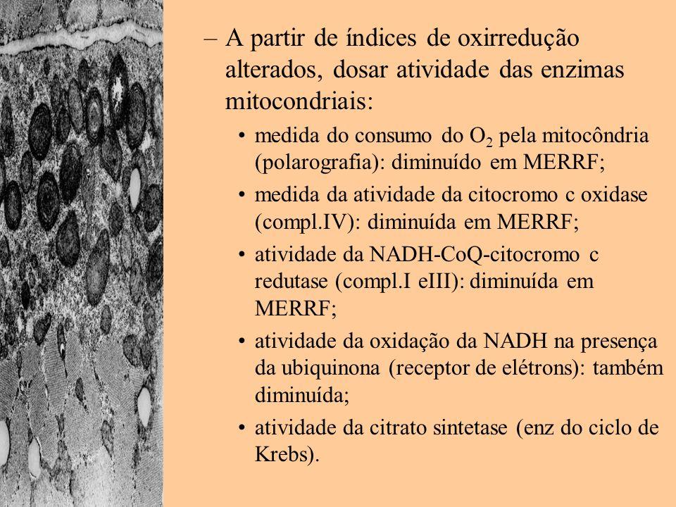 A partir de índices de oxirredução alterados, dosar atividade das enzimas mitocondriais: