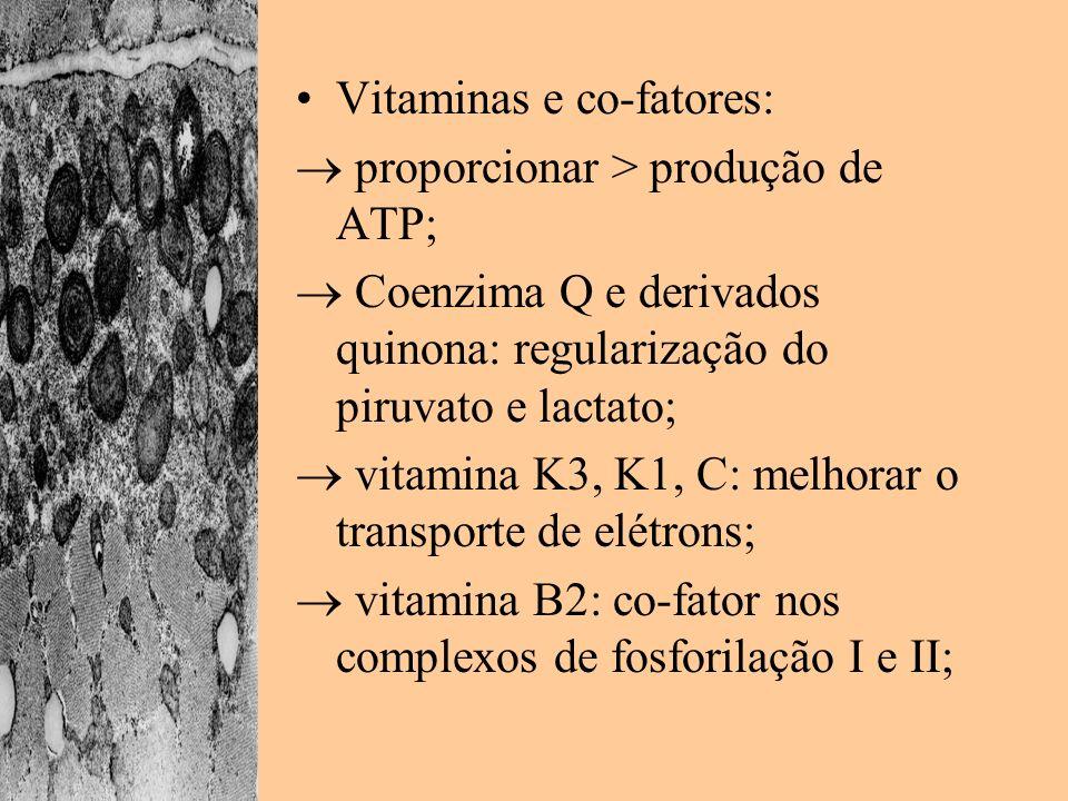 Vitaminas e co-fatores:
