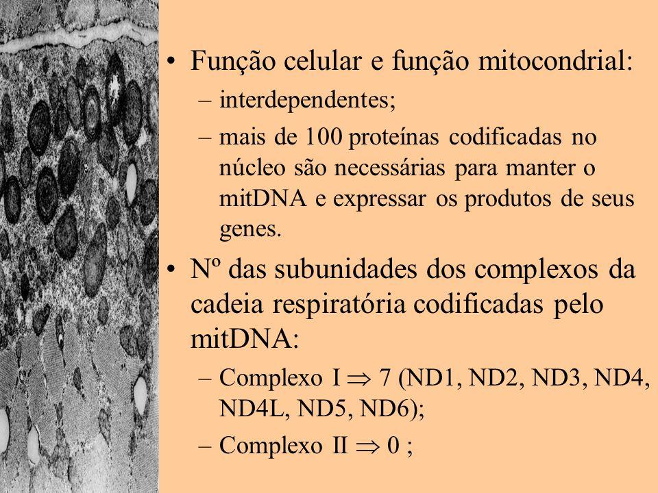 Função celular e função mitocondrial: