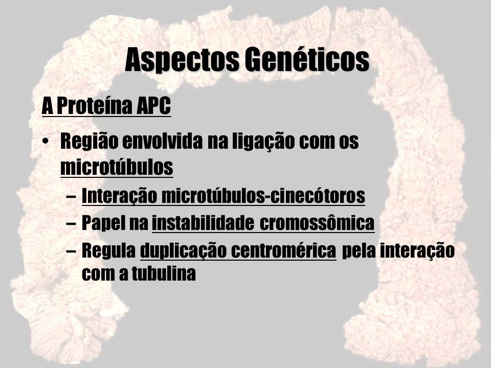Aspectos Genéticos A Proteína APC