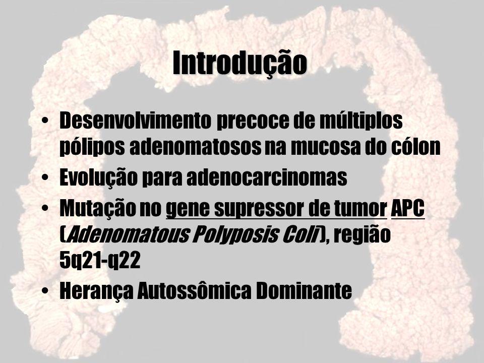 Introdução Desenvolvimento precoce de múltiplos pólipos adenomatosos na mucosa do cólon. Evolução para adenocarcinomas.