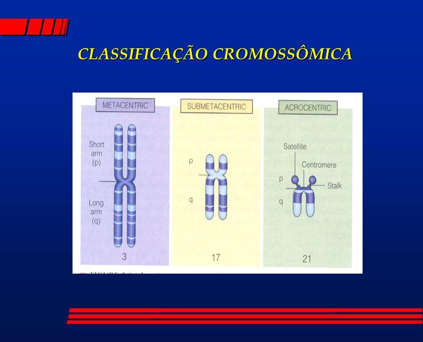 CLASSIFICAÇÃO CROMOSSÔMICA