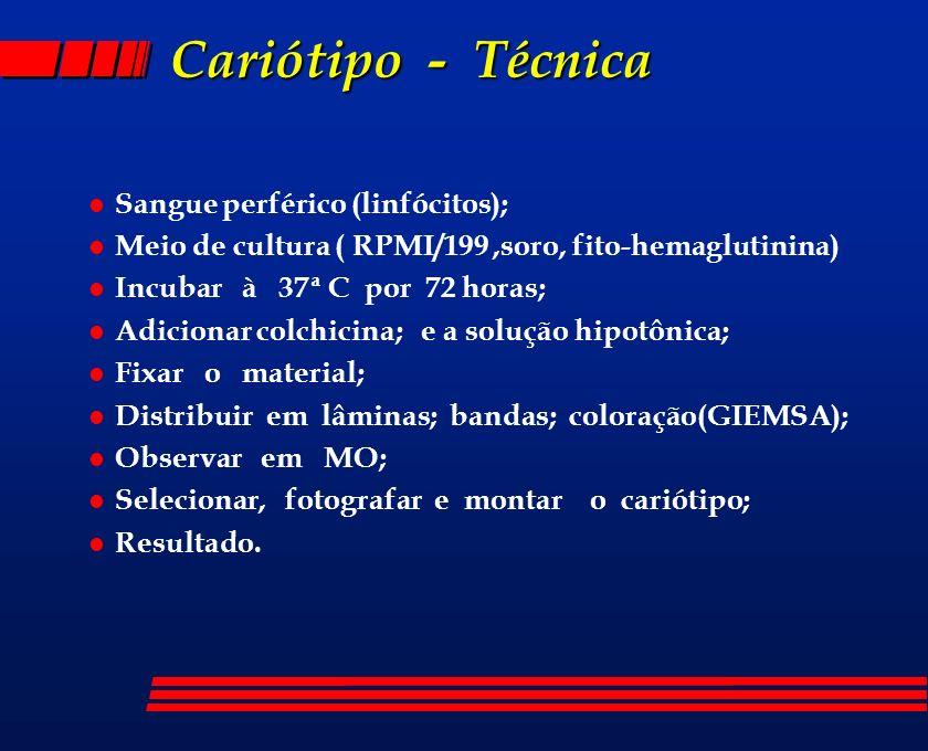 Cariótipo - Técnica Sangue perférico (linfócitos);