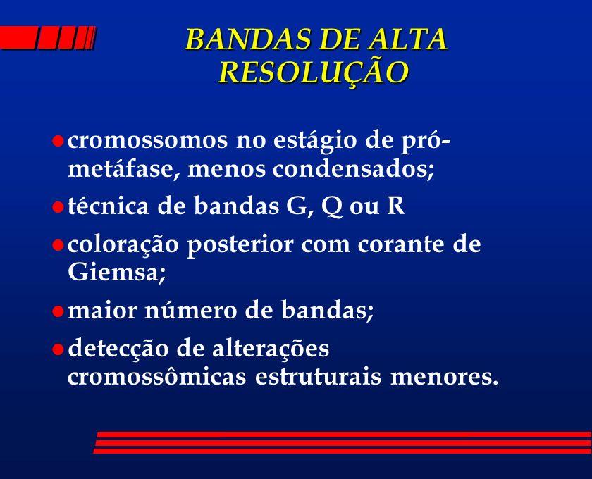BANDAS DE ALTA RESOLUÇÃO