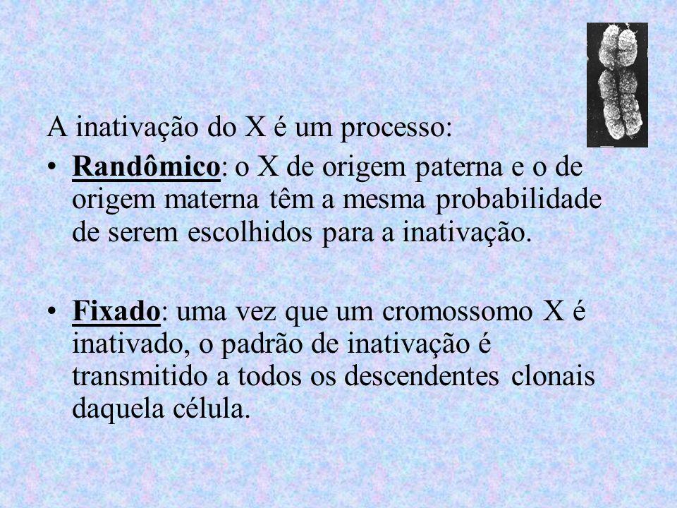 A inativação do X é um processo: