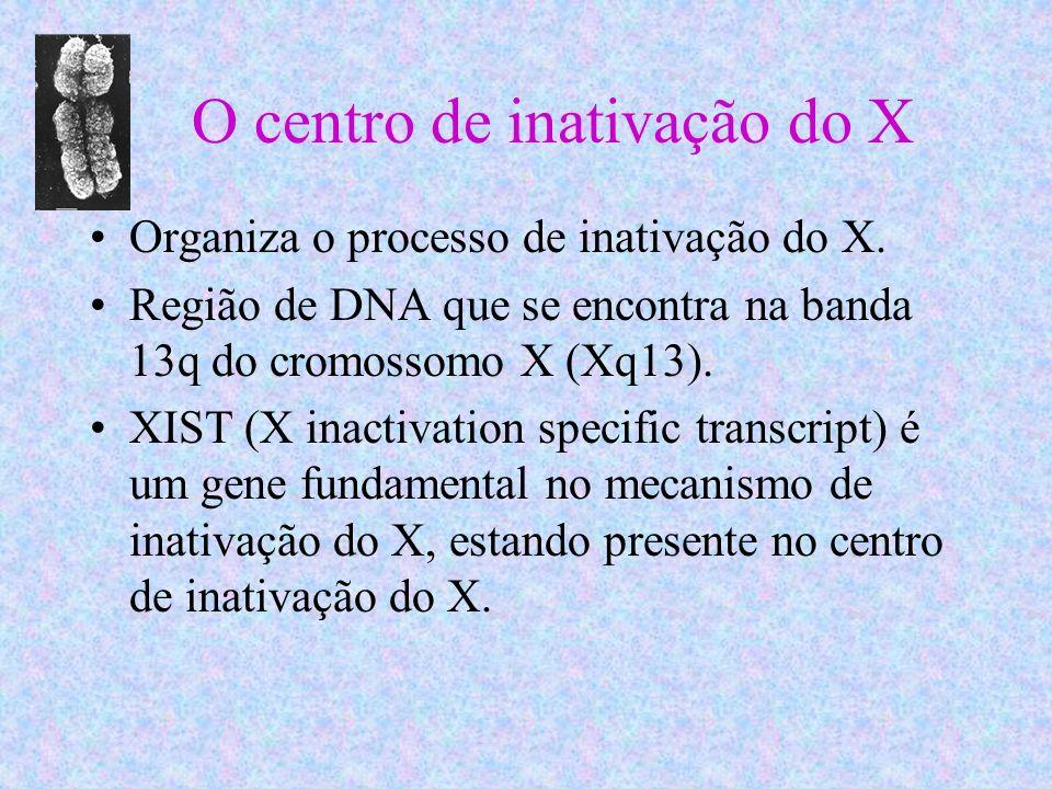 O centro de inativação do X