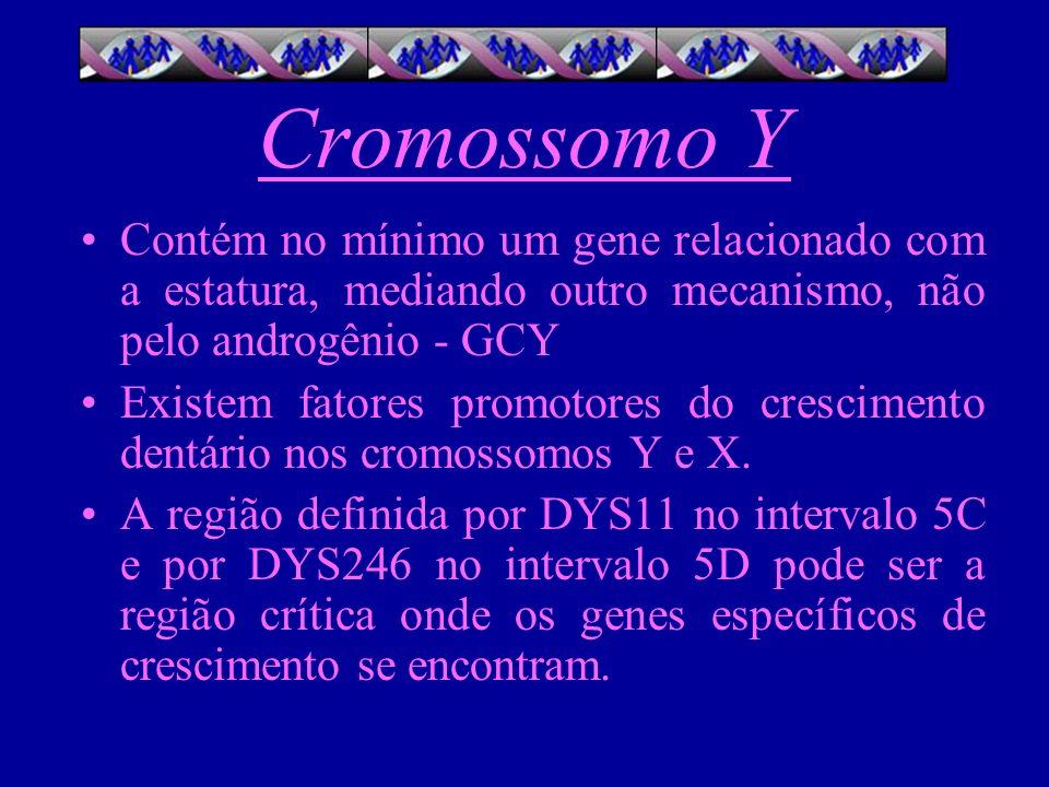Cromossomo Y Contém no mínimo um gene relacionado com a estatura, mediando outro mecanismo, não pelo androgênio - GCY.