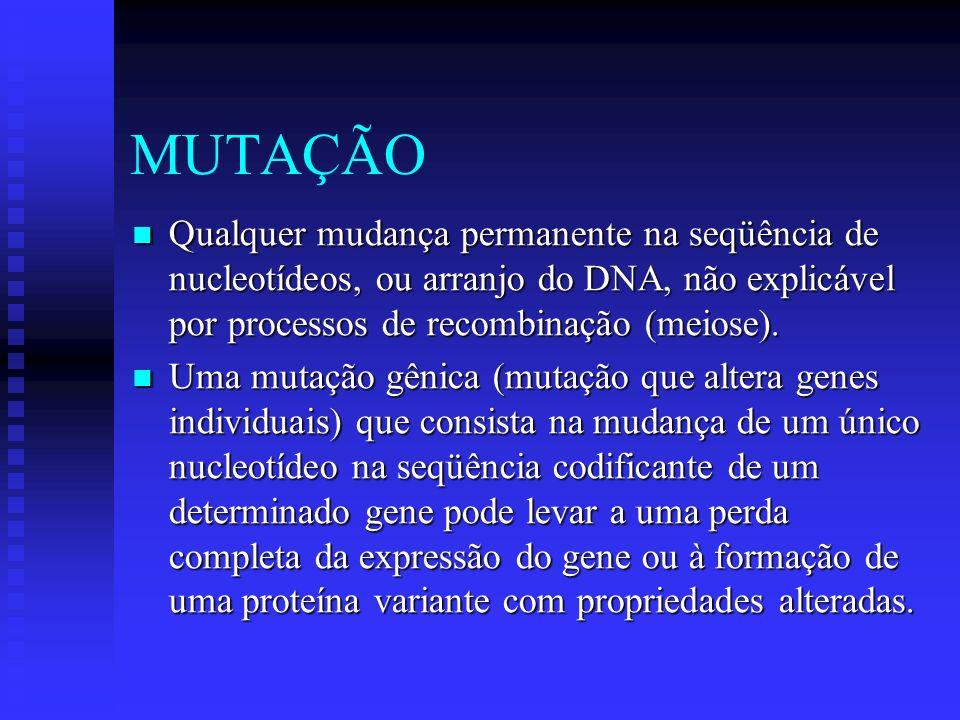 MUTAÇÃOQualquer mudança permanente na seqüência de nucleotídeos, ou arranjo do DNA, não explicável por processos de recombinação (meiose).
