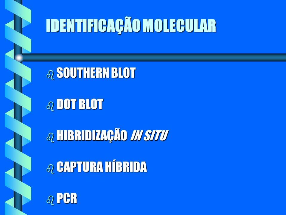 IDENTIFICAÇÃO MOLECULAR