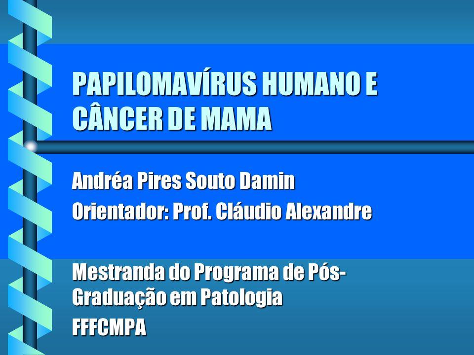 PAPILOMAVÍRUS HUMANO E CÂNCER DE MAMA