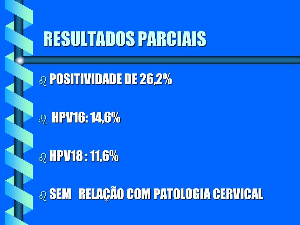 RESULTADOS PARCIAIS POSITIVIDADE DE 26,2% HPV16: 14,6% HPV18 : 11,6%
