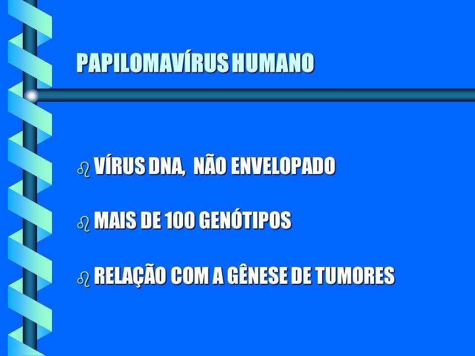 PAPILOMAVÍRUS HUMANO VÍRUS DNA, NÃO ENVELOPADO MAIS DE 100 GENÓTIPOS