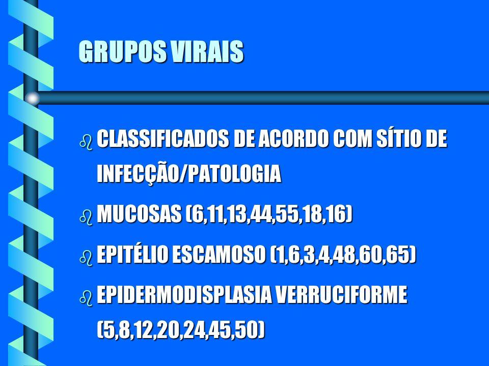 GRUPOS VIRAIS CLASSIFICADOS DE ACORDO COM SÍTIO DE INFECÇÃO/PATOLOGIA