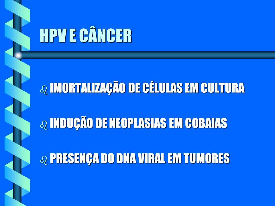HPV E CÂNCER IMORTALIZAÇÃO DE CÉLULAS EM CULTURA