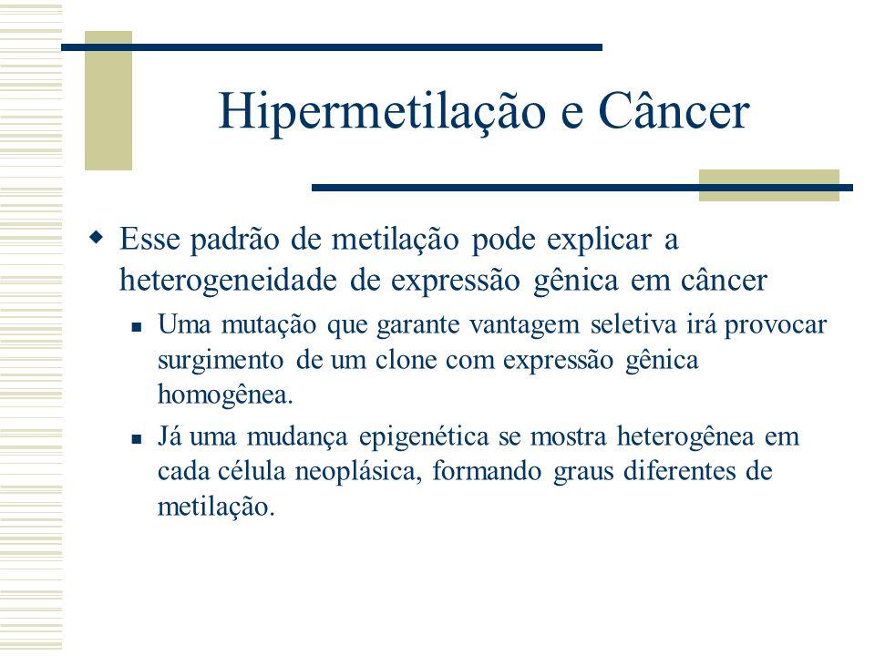 Hipermetilação e Câncer