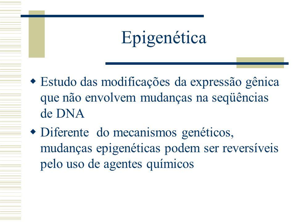 Epigenética Estudo das modificações da expressão gênica que não envolvem mudanças na seqüências de DNA.