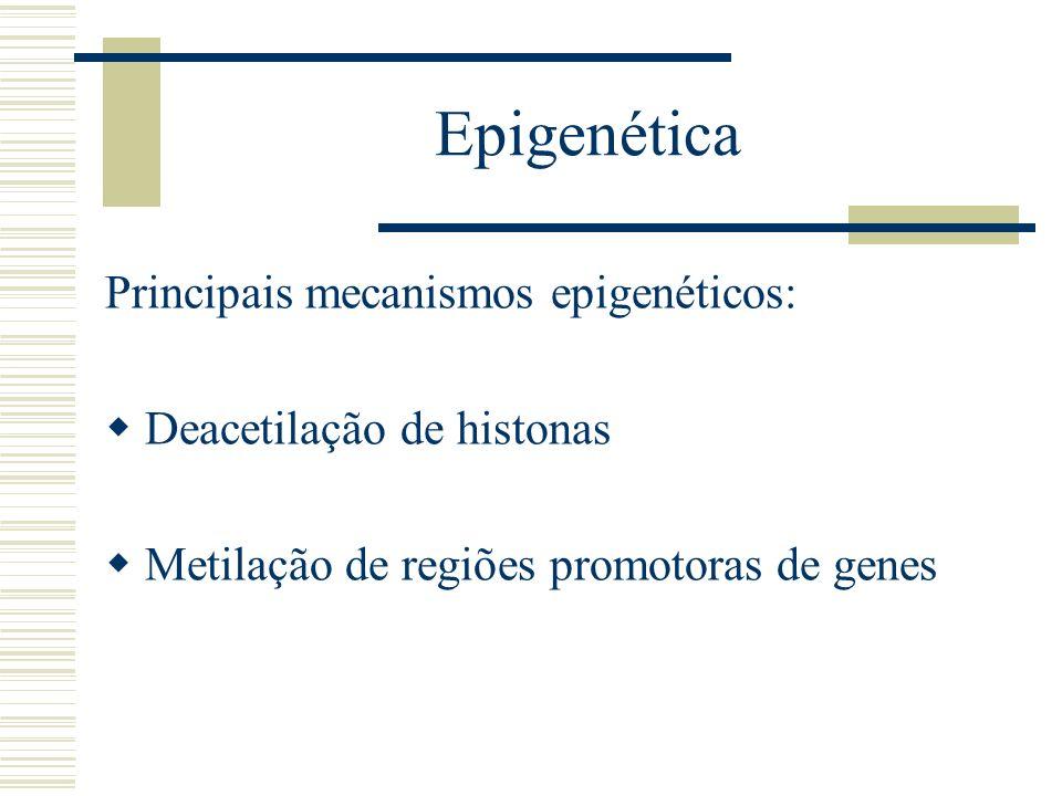 Epigenética Principais mecanismos epigenéticos: