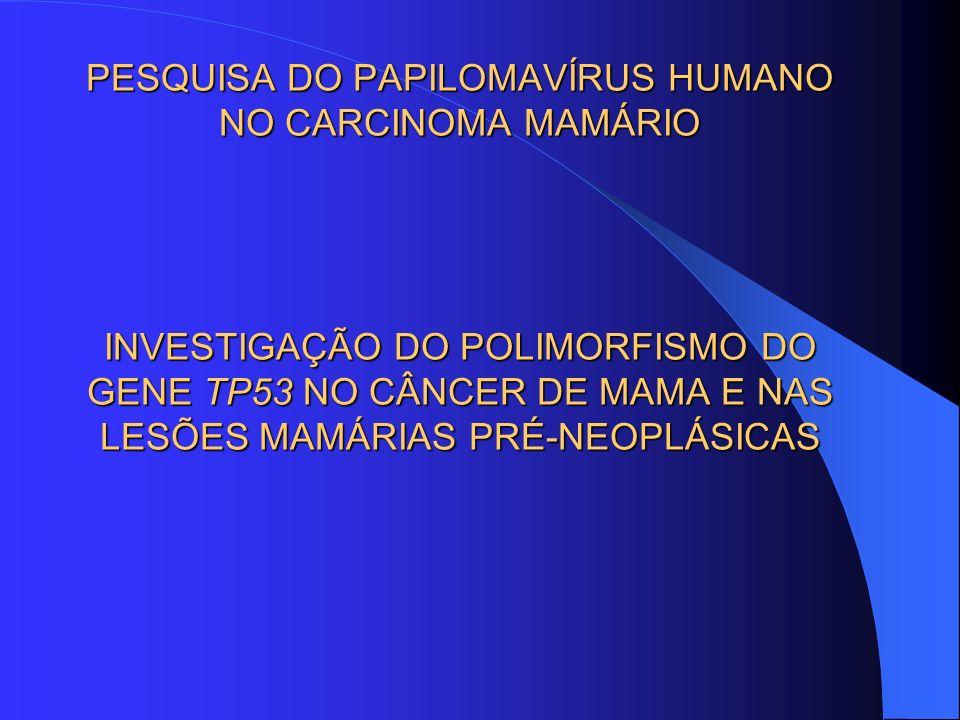 PESQUISA DO PAPILOMAVÍRUS HUMANO NO CARCINOMA MAMÁRIO INVESTIGAÇÃO DO POLIMORFISMO DO GENE TP53 NO CÂNCER DE MAMA E NAS LESÕES MAMÁRIAS PRÉ-NEOPLÁSICAS