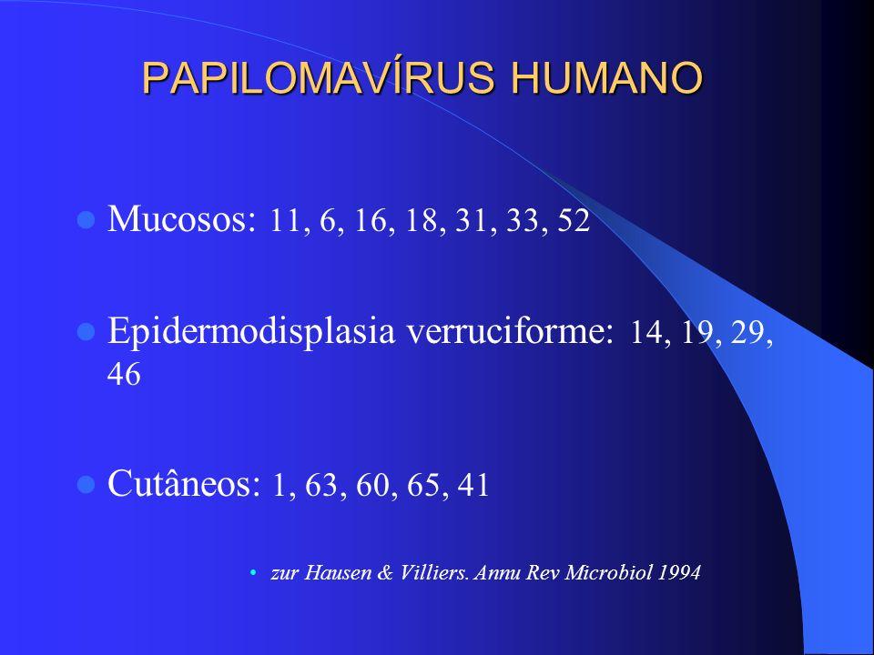 PAPILOMAVÍRUS HUMANO Mucosos: 11, 6, 16, 18, 31, 33, 52