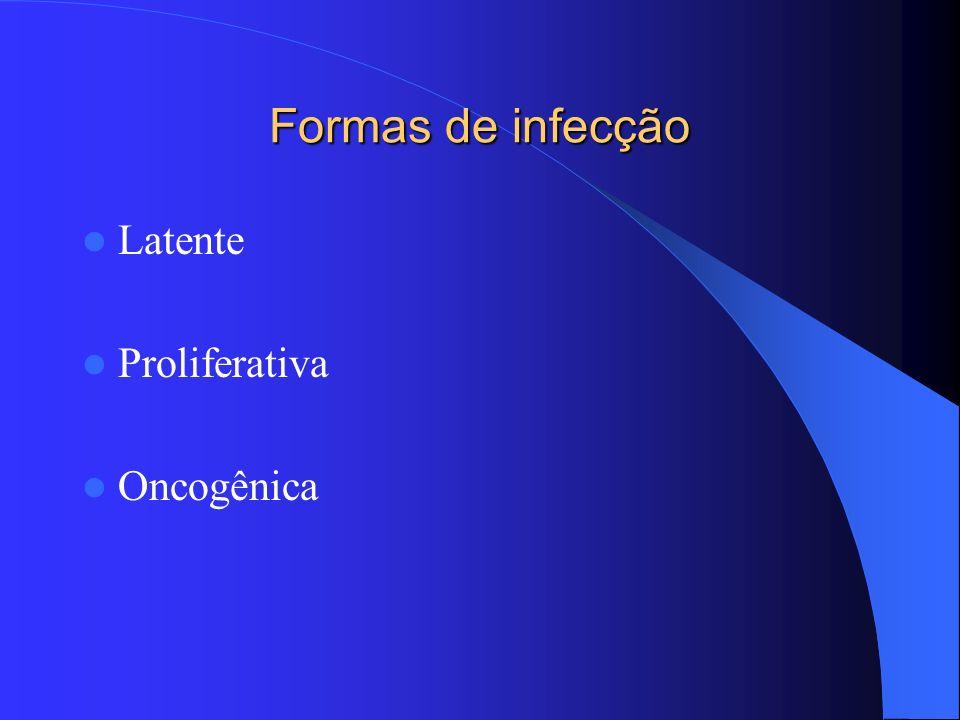 Formas de infecção Latente Proliferativa Oncogênica