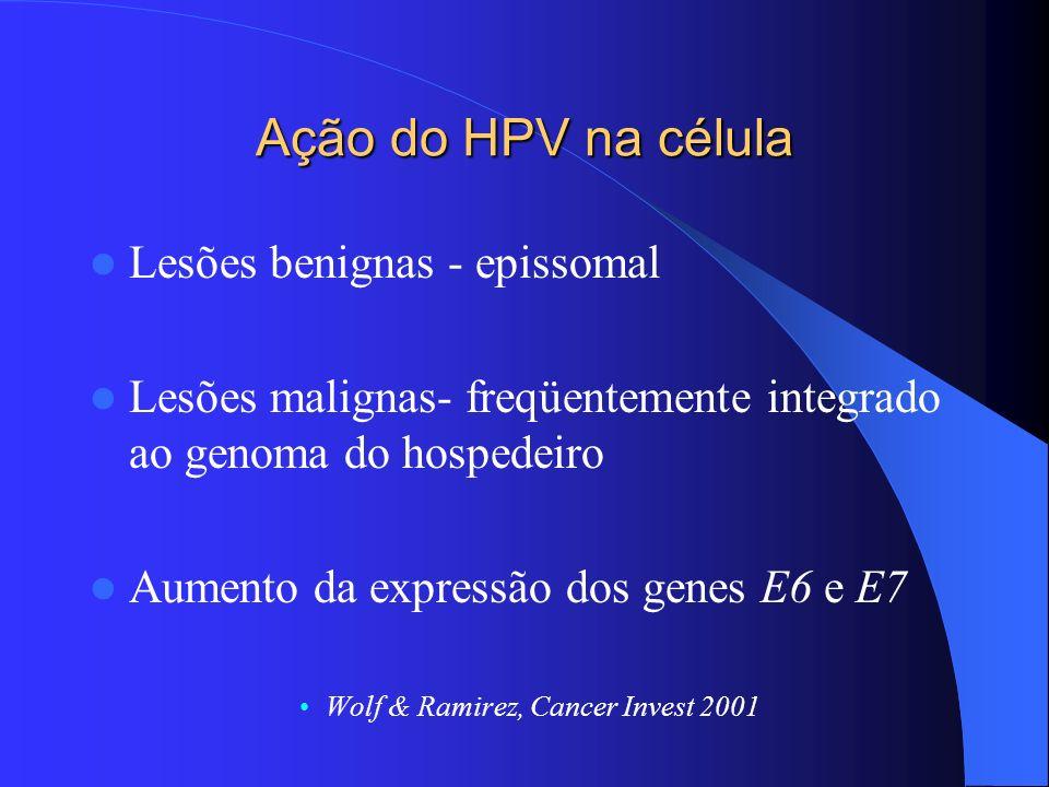 Ação do HPV na célula Lesões benignas - epissomal