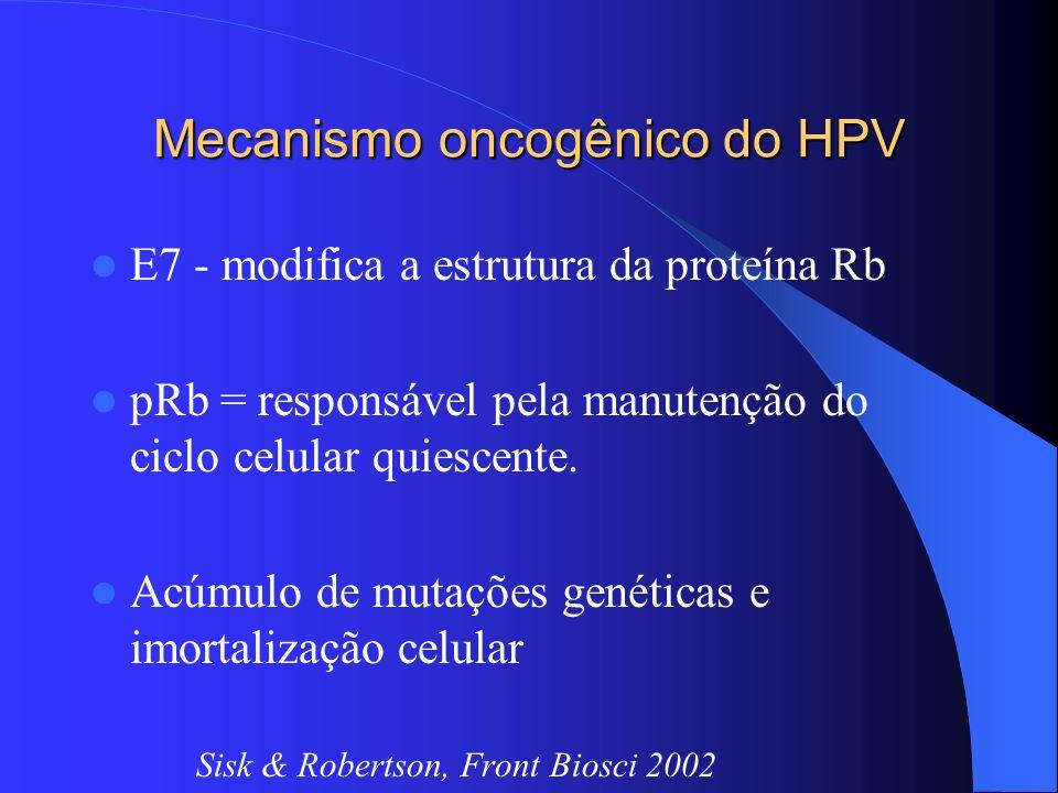 Mecanismo oncogênico do HPV