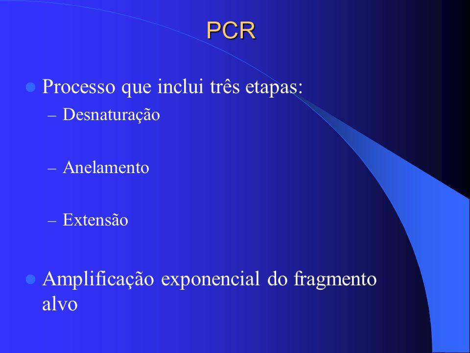 PCR Processo que inclui três etapas:
